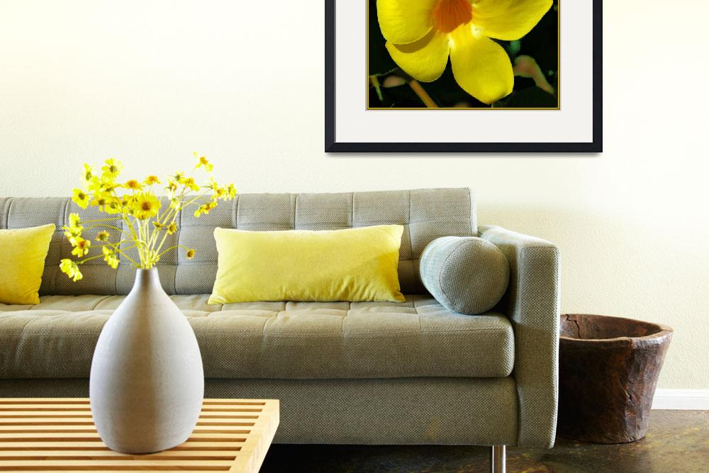 """""""Shades of Yellow&quot  by doncon402"""