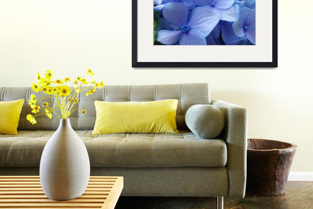 """Blue Hydrangea Flower art prints Nature Colorful""  (2010) by BasleeTroutman"