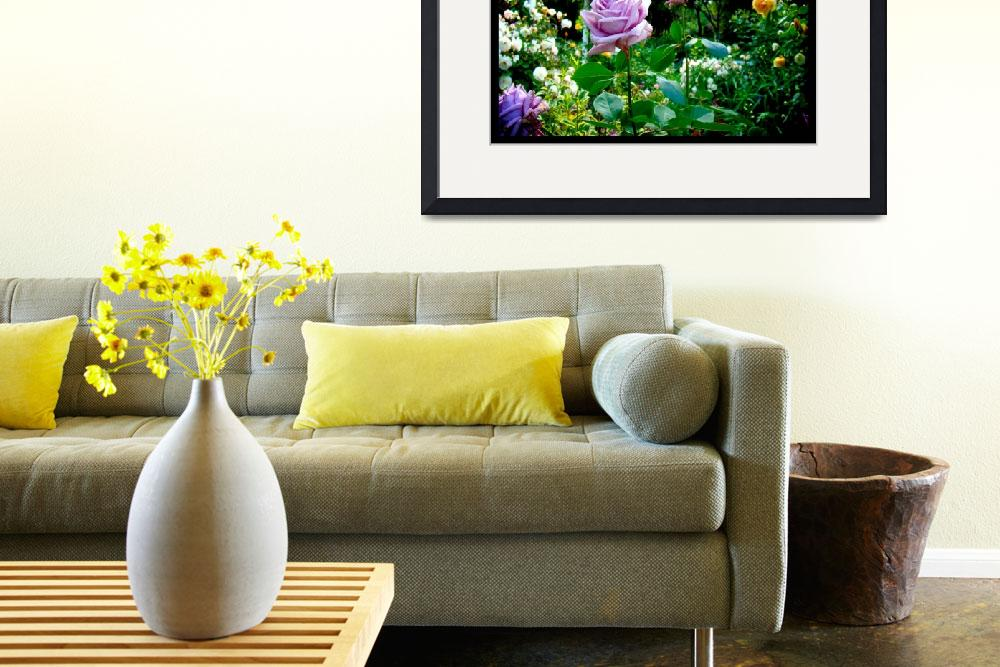 """""""Naik Michel Photography - Hortensia House Garden&quot  (2010) by naikmichel"""