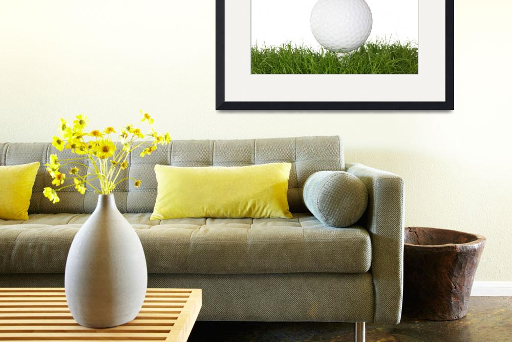 """""""A golf ball in the grass.&quot  (2008) by Piotr_Marcinski"""