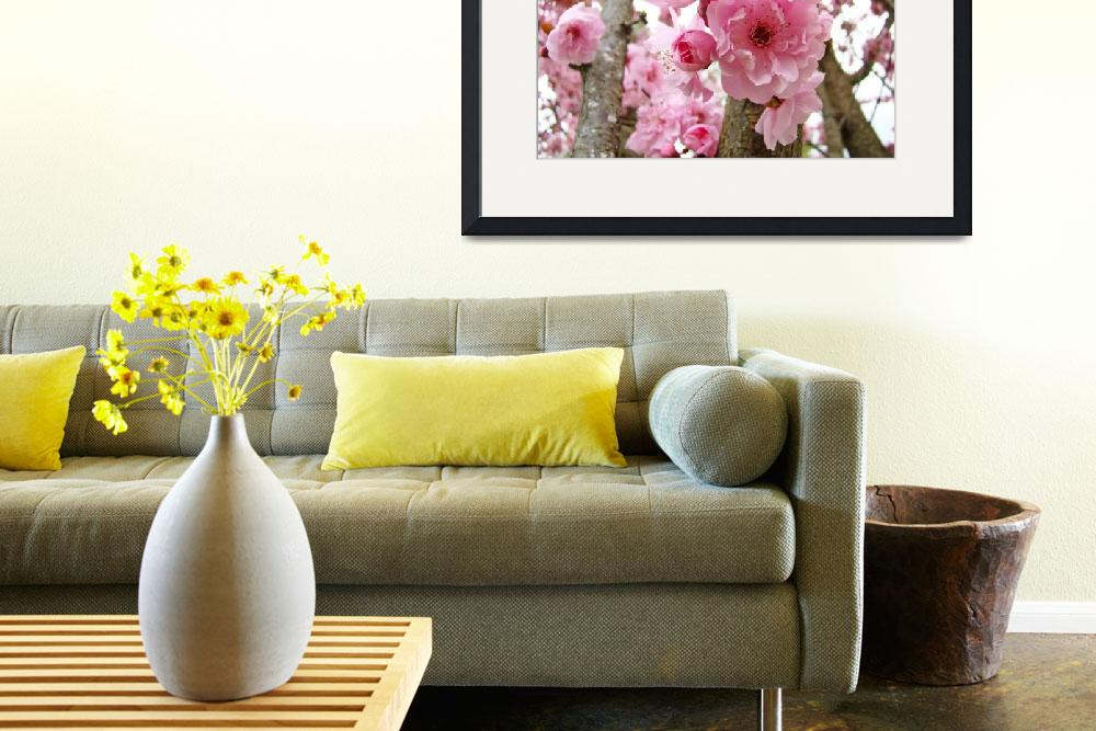 """""""BLOSSOMS PINK TREE Blossoms Flower Art Prints&quot  (2009) by BasleeTroutman"""