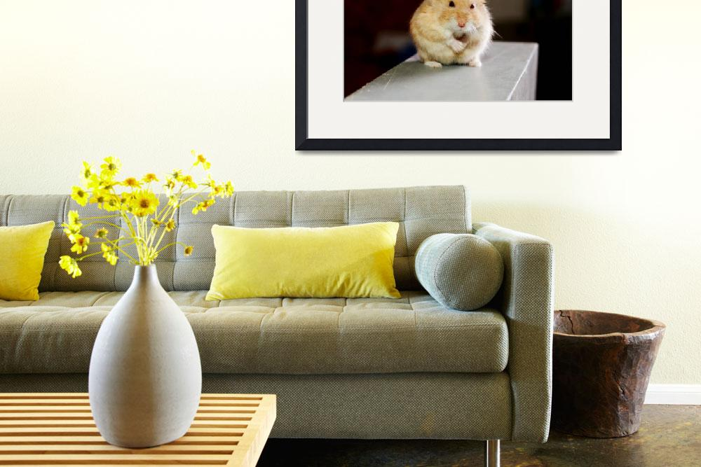 """""""Humpy the Hamster&quot  by Bachua"""