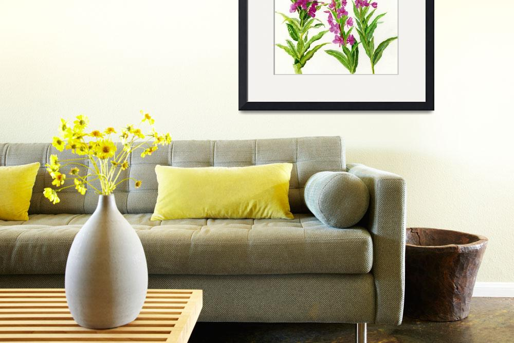 """""""Fireweed (white background)""""  (2014) by Pacific-NW-Watercolors"""
