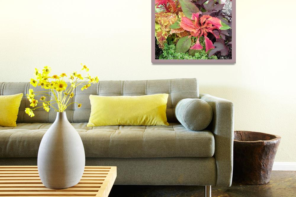 """""""Colorful Mix""""  by sgrace"""