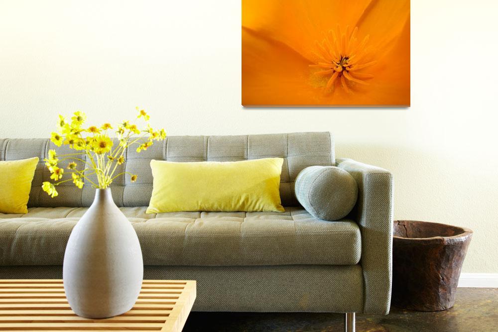 """Macro Wildflower Poppy Flower 6 Floral Art Print""  (2009) by BasleeTroutman"