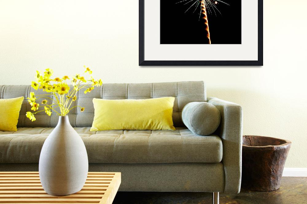 """""""Gold & Green Palm Tree    Fireworks&quot  (2009) by budo"""