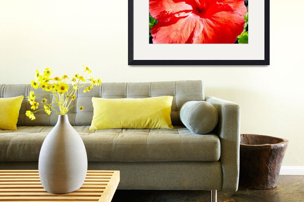 """""""Red Hibiscus&quot  (2010) by paulyworksfineart"""