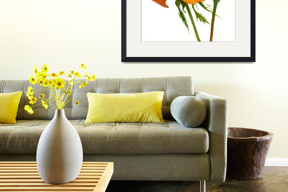 """""""Yellow Orange with Bud white background""""  (2017) by Pacific-NW-Watercolors"""