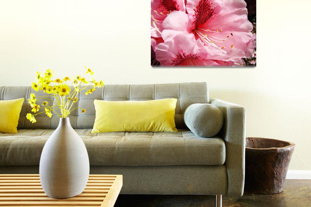 """""""Bright Colorful Pink Rhododendron Flowers art""""  (2011) by BasleeTroutman"""