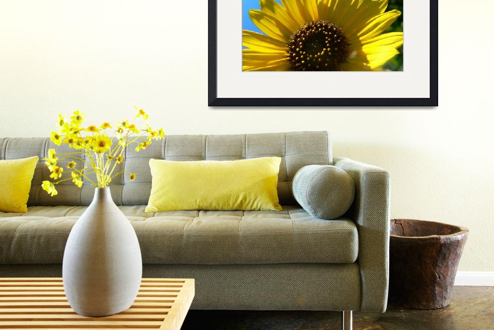 """""""Sunflower&quot  by perfhex"""