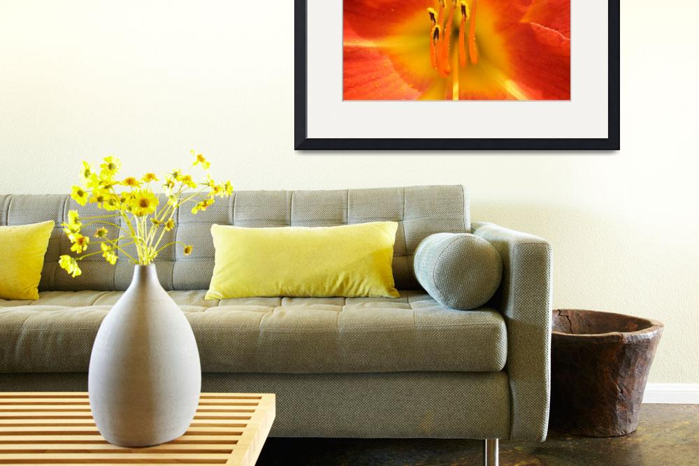 """""""Day Lily""""  (2011) by kmandeville"""