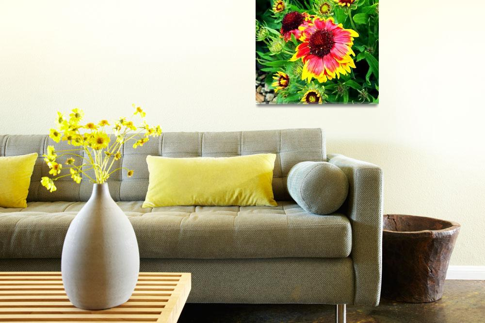 """Blanket Flower""  (2011) by rewards4life"