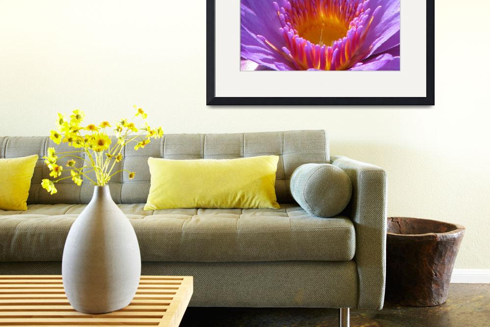 """""""Lotus at Biltmore&quot  (2009) by srzimmartist"""