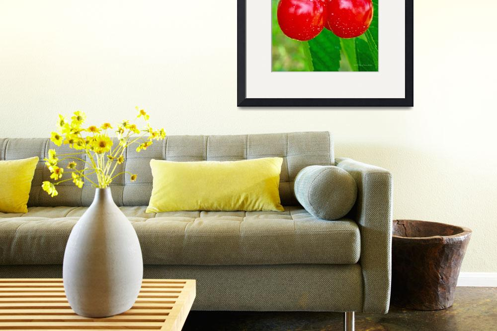 """""""Cherries&quot  by HodlinGallery"""