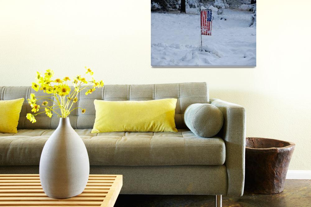 """Flag in Snow""  (2007) by azvirtual"