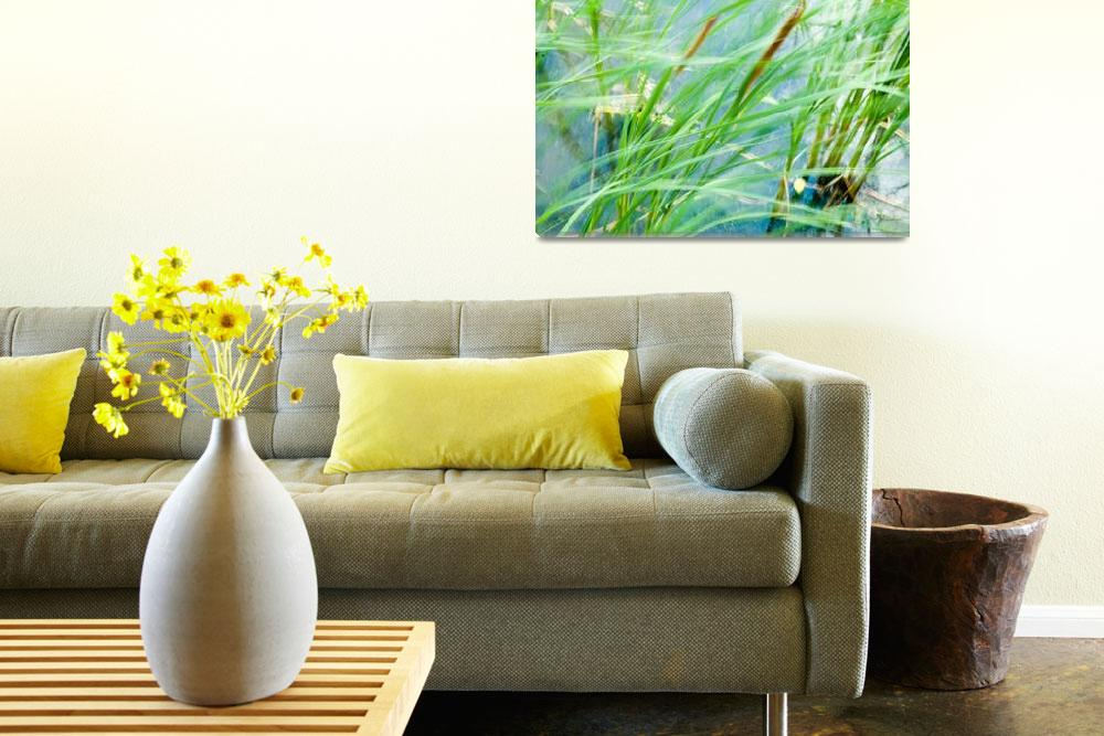 """""""Dancing Cattails-1""""  by JenCamera"""
