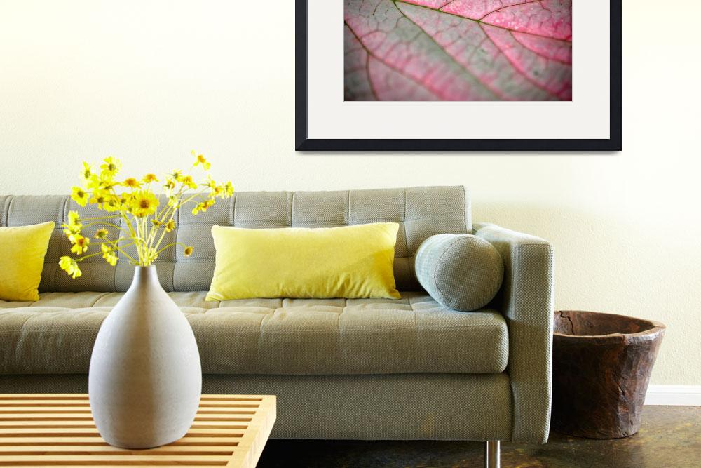 """""""Pink Leaf&quot  by BranchDesign"""