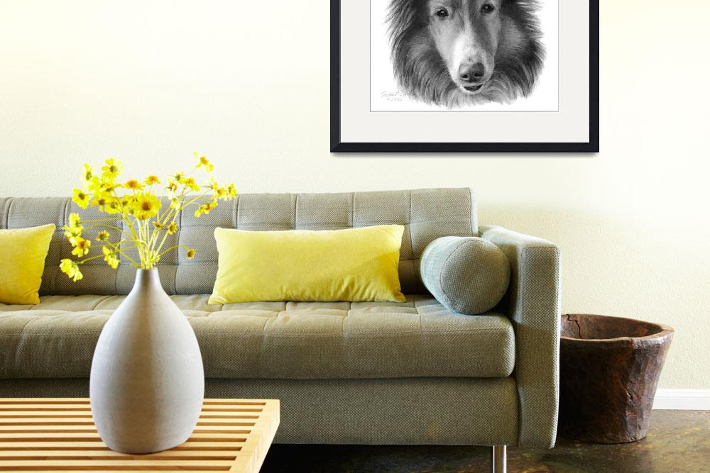 """Rough Collie&quot  (2006) by sdonley"