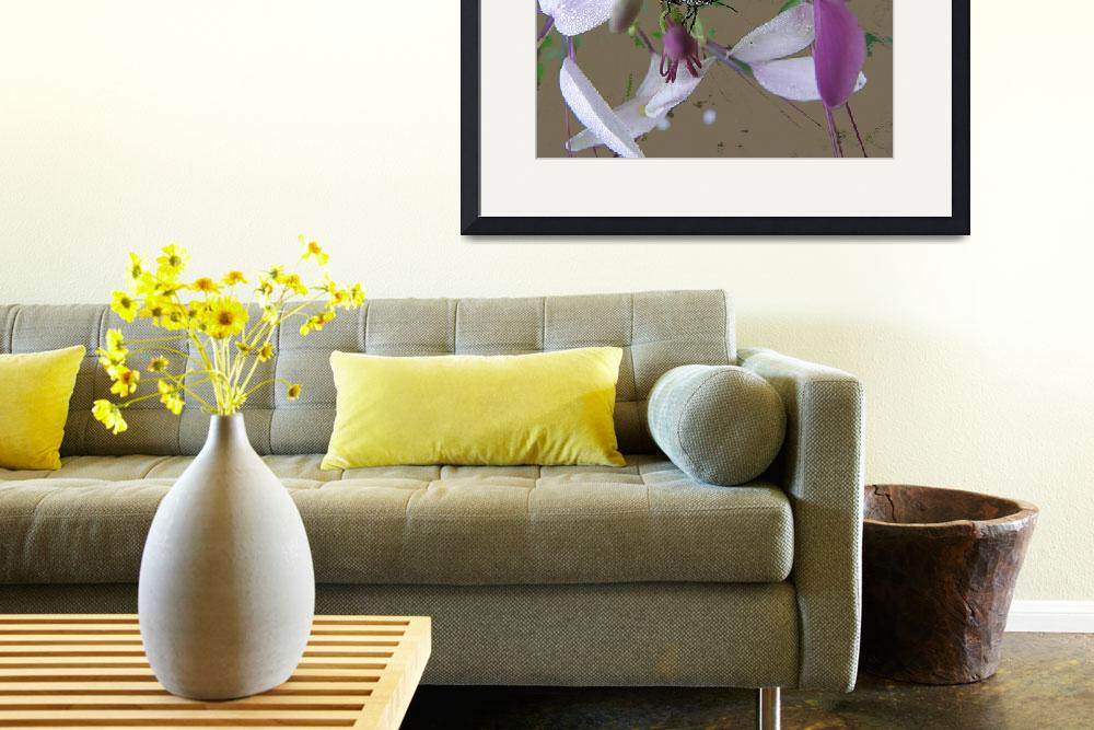 """""""A Lover of Cleome&quot  (2011) by marshacarson"""
