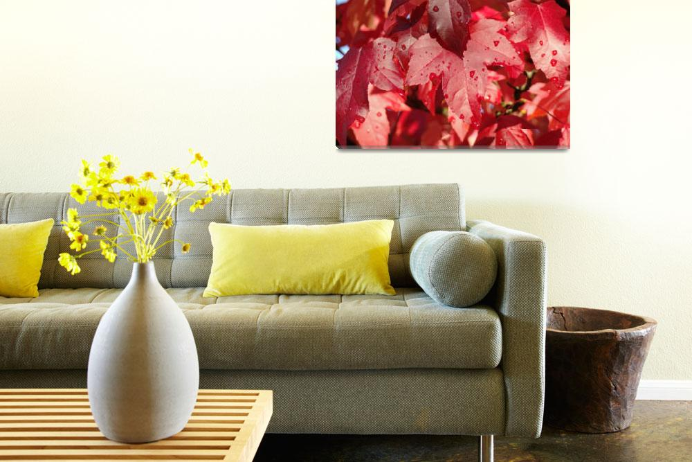 """""""WET RED Autumn Leaves Fall Trees art prints nature""""  (2013) by BasleeTroutman"""
