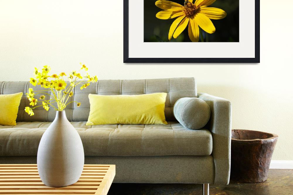 """""""Stinging Yellow&quot  by doncon402"""