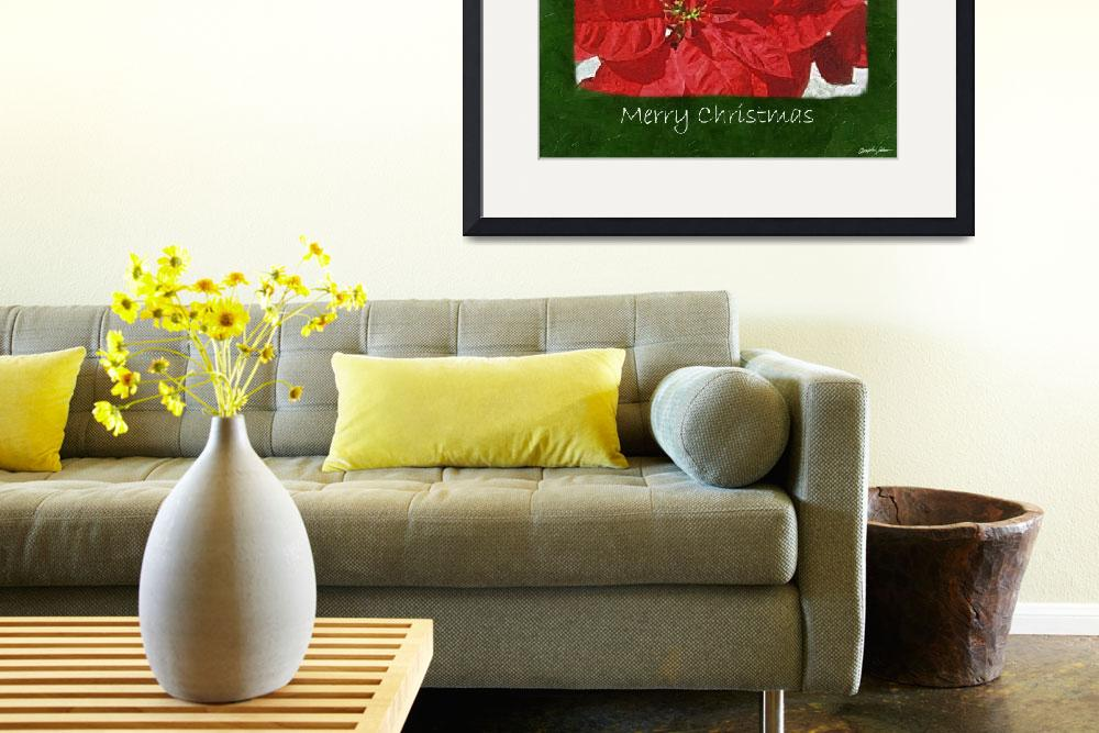 """Red Poinsettias 3 - Merry Christmas&quot  (2009) by ChristopherInMexico"