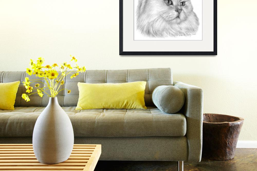 """""""White Persian Cat&quot  (2006) by sdonley"""