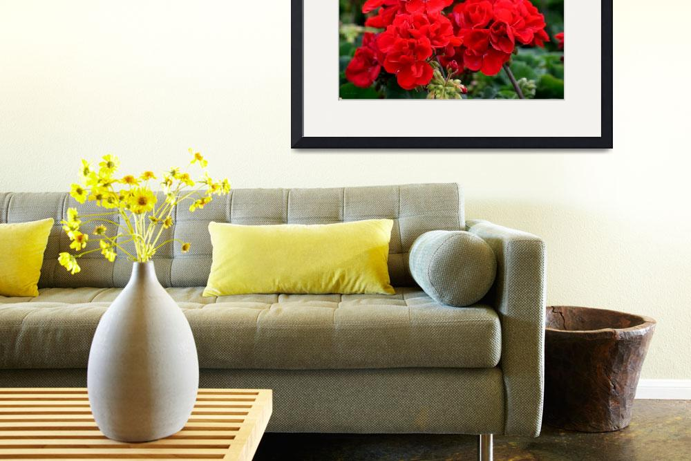 """""""Expressive Floral Red Geraniums E131716""""  (2016) by MasArtStudio"""