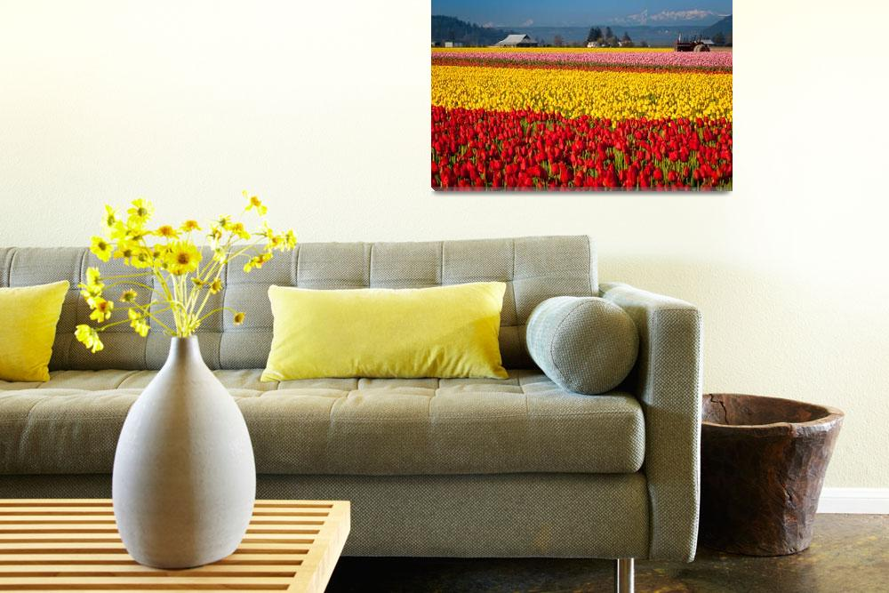 """""""Tulips and the Olympics&quot  (2011) by Inge-Johnsson"""