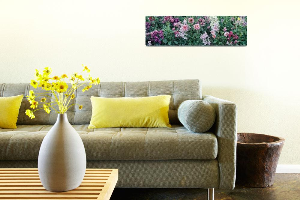 """""""flowers&quot  by Panoramic_Images"""