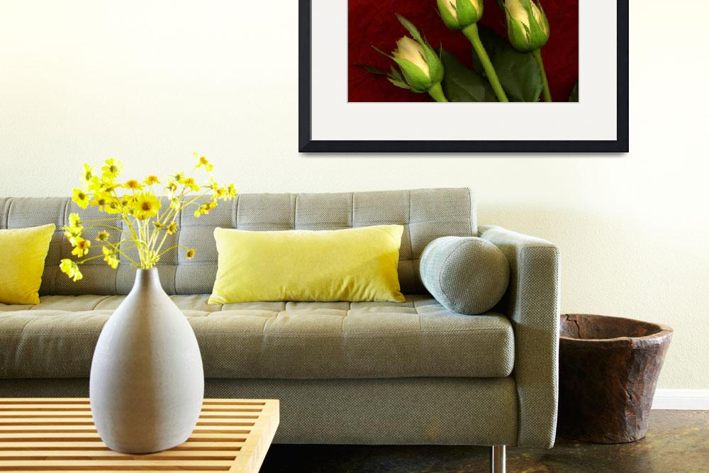 """""""F0023  Three Flowers&quot  by walshphotos"""
