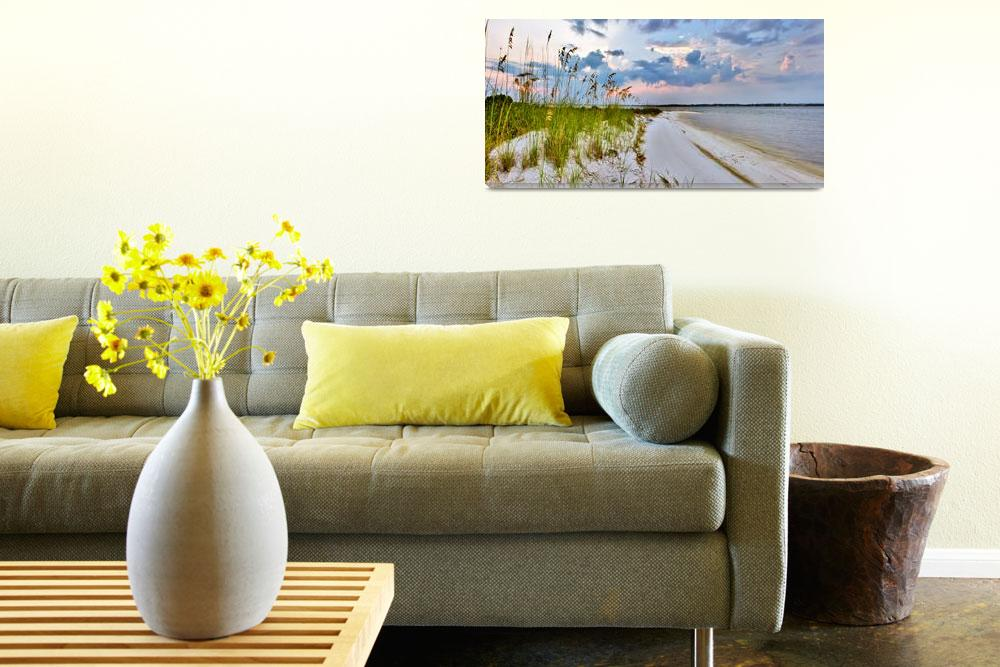 """""""Panoramic Landscape with Green Grass and Sea Oats""""  (2010) by eszra"""