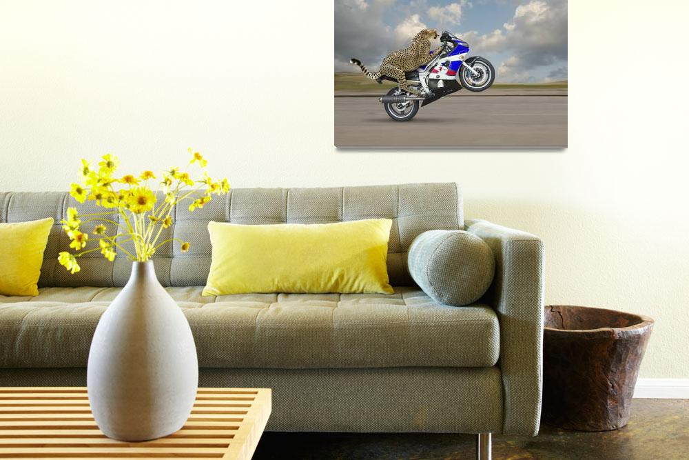 """""""Cheetah-On-A-Motorcycle&quot  (2014) by johnlund"""