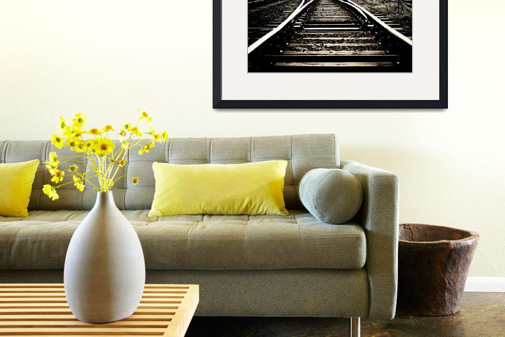 """""""Rail Road&quot  (2011) by redfibres"""