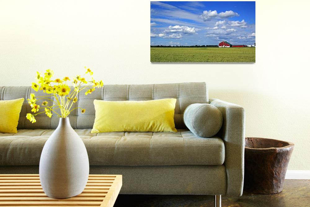 """""""Harvest Field&quot  (2009) by CampCrazyPhotography"""