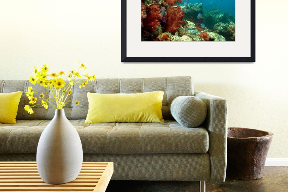 """""""Fijian Coral Reef&quot  by dallaspoore"""