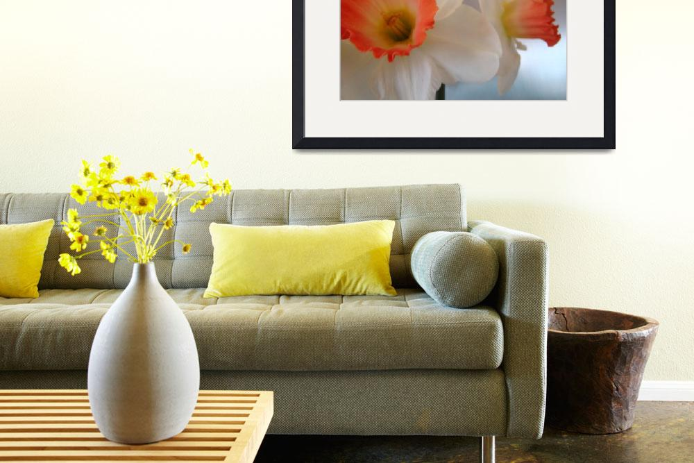 """""""Narcissus Flowers Spring 4 Mdern Art Prints Gifts""""  (2009) by BasleeTroutman"""