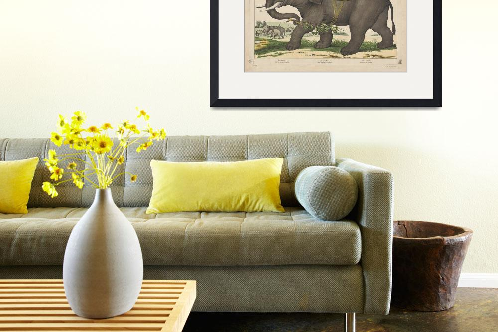 """""""Vintage Painting of Men Riding an Elephant&quot  by Alleycatshirts"""