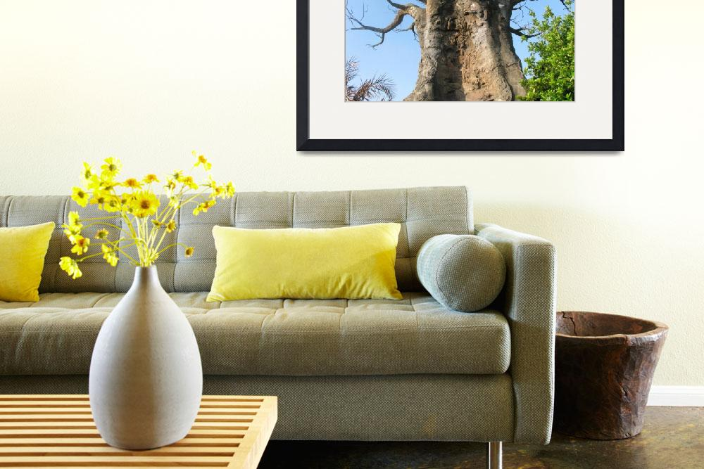 """""""A giant baobab tree in a blue sky scene&quot  (2010) by Maly"""