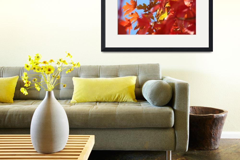 """Colorful Fall Tree Leaves art prints Autumn Baslee""  (2011) by BasleeTroutman"