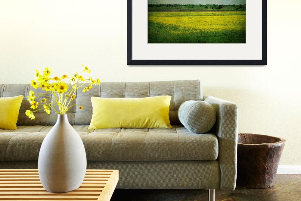 """the yellow field 2""  (2011) by phototarget"