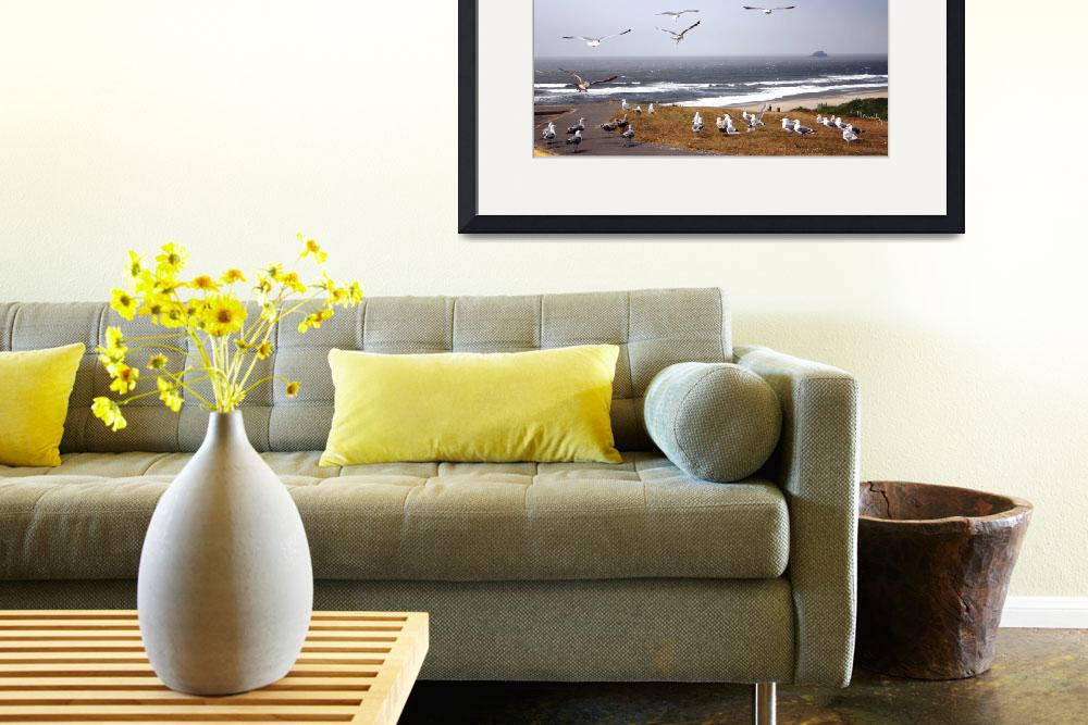 """Gulls, Oregon Coast&quot  (2007) by jacquelinemauritzartist"