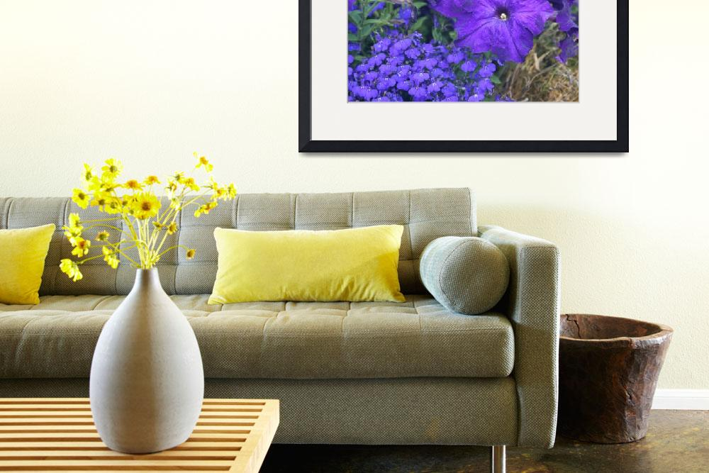 """""""a petunia flower&quot  by photographyview"""