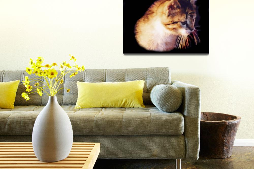 """Cute Kitten PhotoIllustration&quot  by bjasmine"