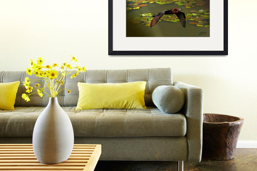 """""""Egret and Lily Pads at Sunrise""""  (2011) by spadecaller"""