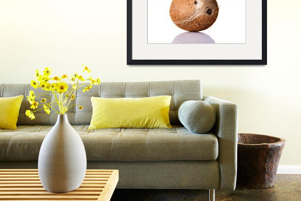 """""""Coconut isolated on white background""""  by Piotr_Marcinski"""
