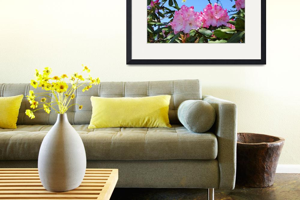 """""""Blue Sky Rhodies Pink Floral Photography Art Print&quot  (2014) by BasleeTroutman"""