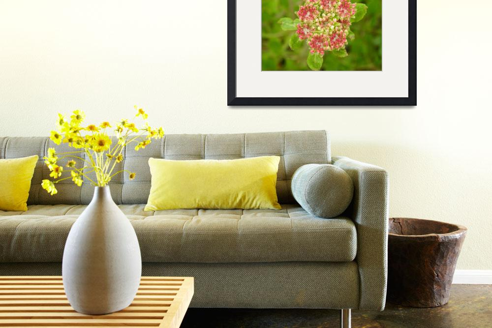 """""""Botanical - Wild Beauty - Outdoors Floral&quot  by artsandi"""