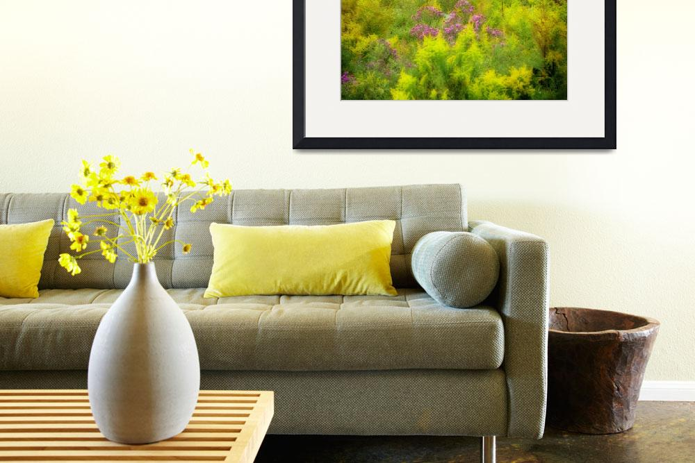 """""""Asters in the Goldenrod&quot  (2010) by RobinMSP"""