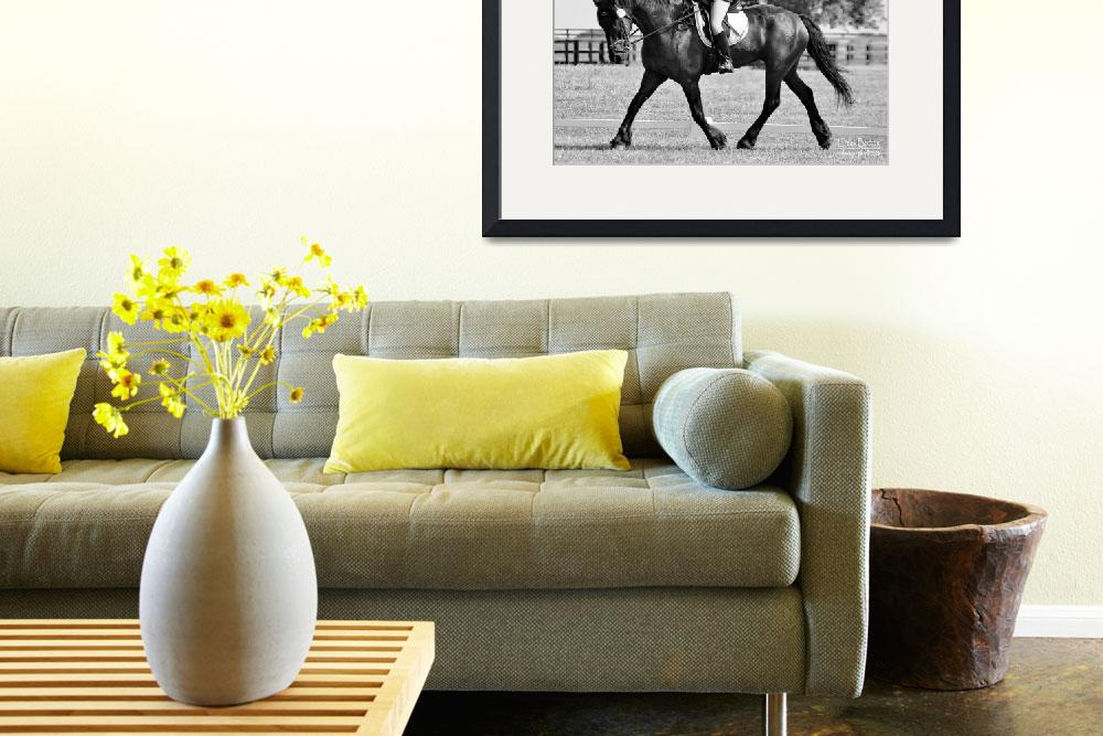 """© CBp BW DRESSAGE""  by creekbottomgifts"